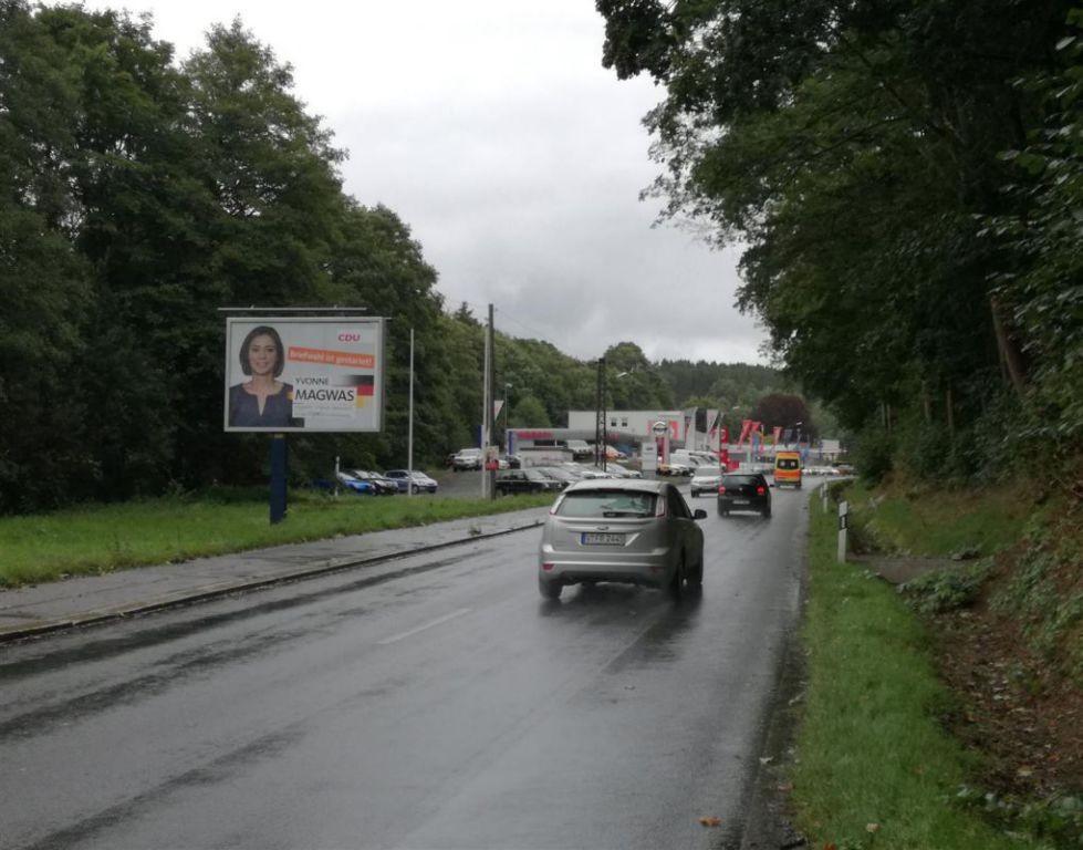 Wernesgrüner Str. geg. Bachstr.  91c/We.li. CS