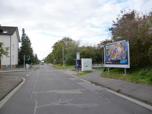 Daimler Straße gg. / Anhalter Straße, Bush.