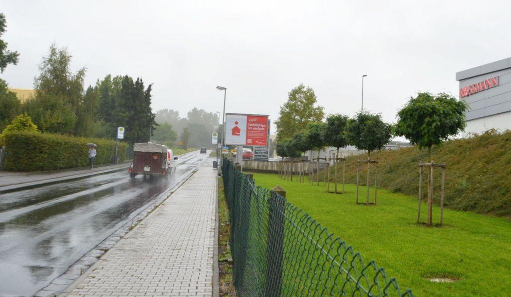 Langendernbacher Str. 49/neb. Lidl/WE rts (City-Star)
