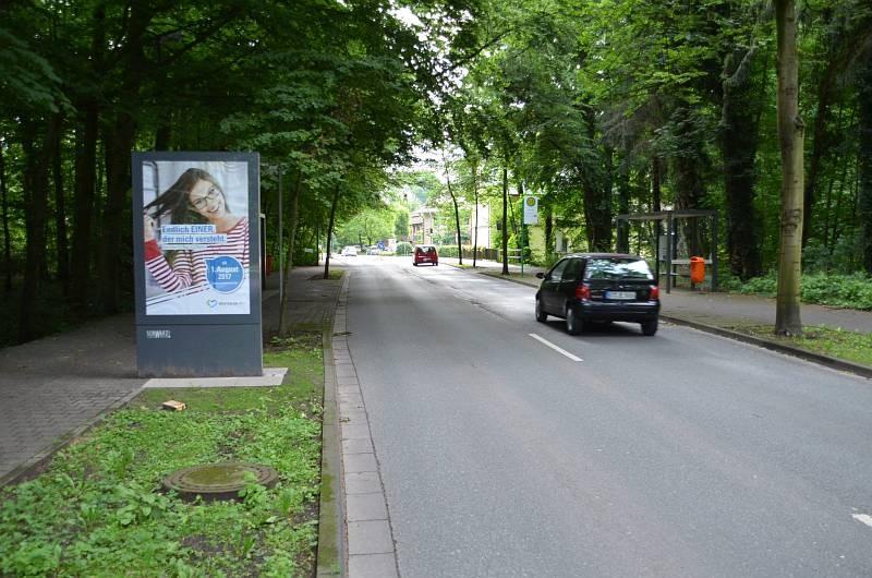 Isselhorster Str/Haller Str (Sicht Haller Str)