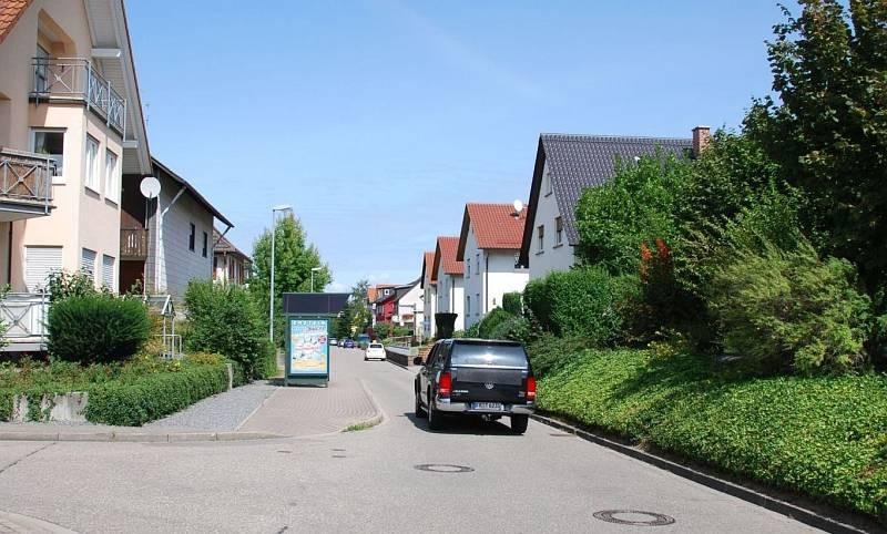 Okenstr/geg. Nr. 308/Hts Wilhelm-Störk-Str/aussen  (WH)