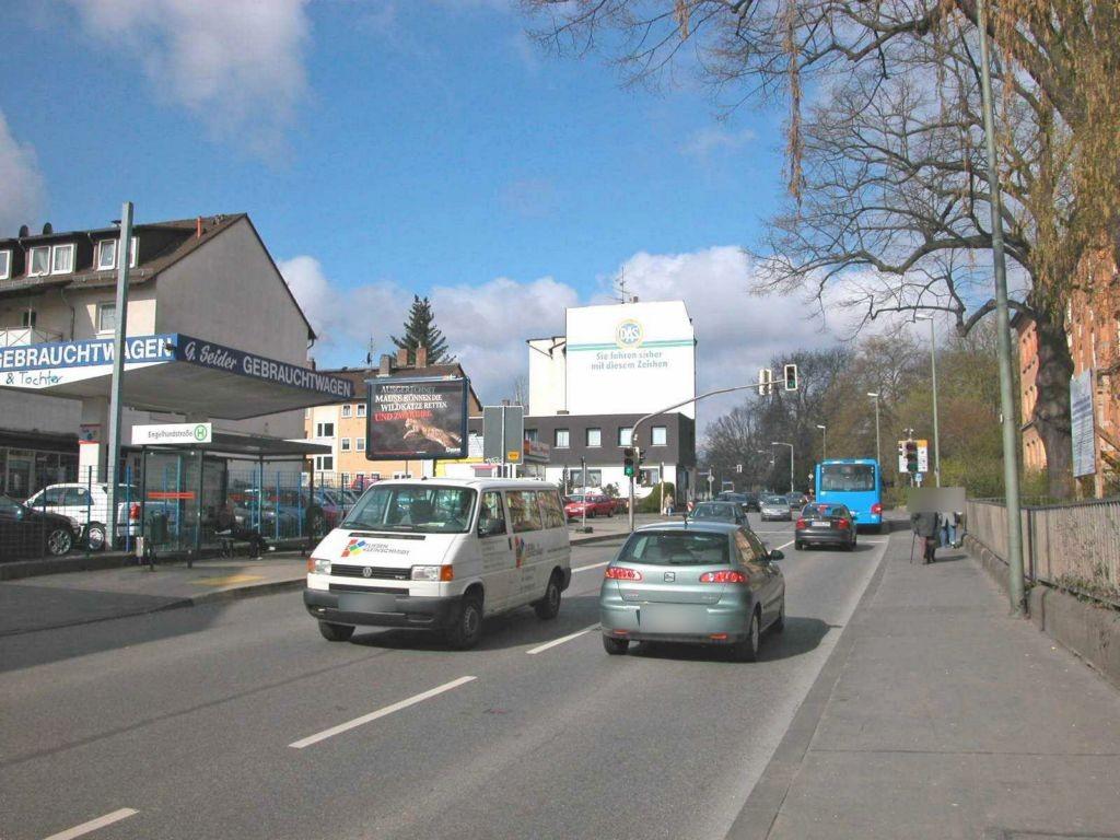 Wolfhager Str 179 aw (B 251)/Engelhardstr nh