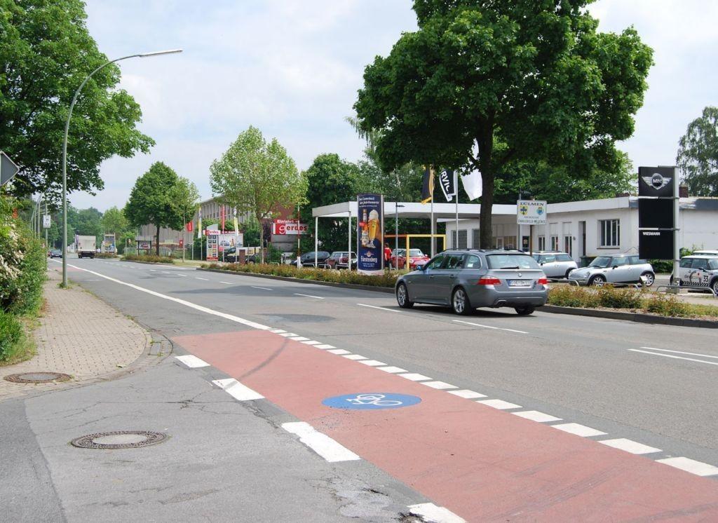 Halterner Str/Dammweg