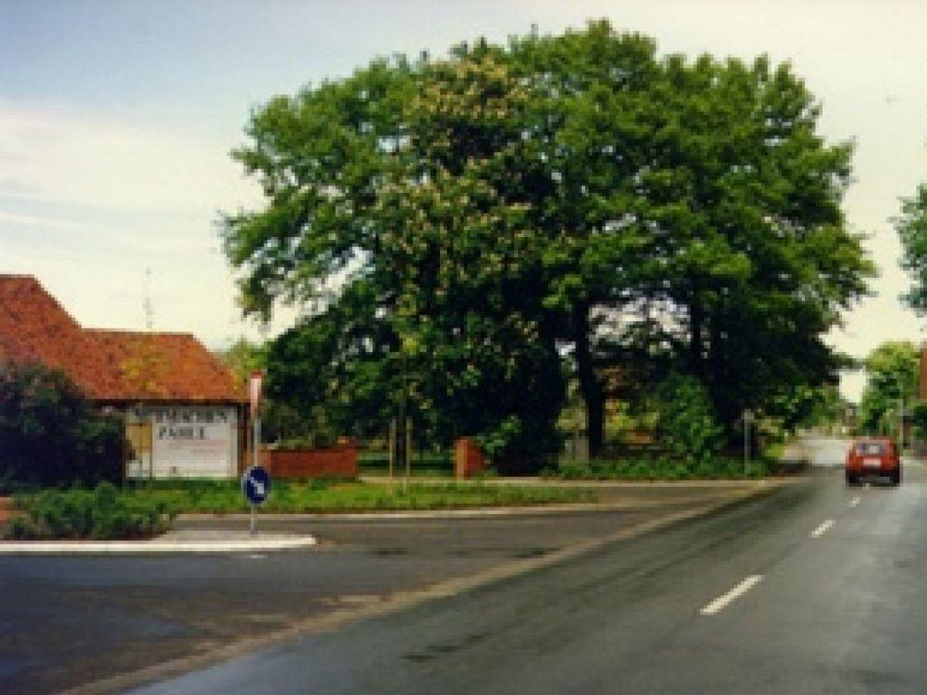Steinweg 75