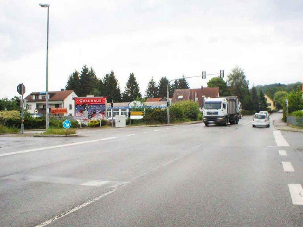 Trauben 2  / Altdorfstr.