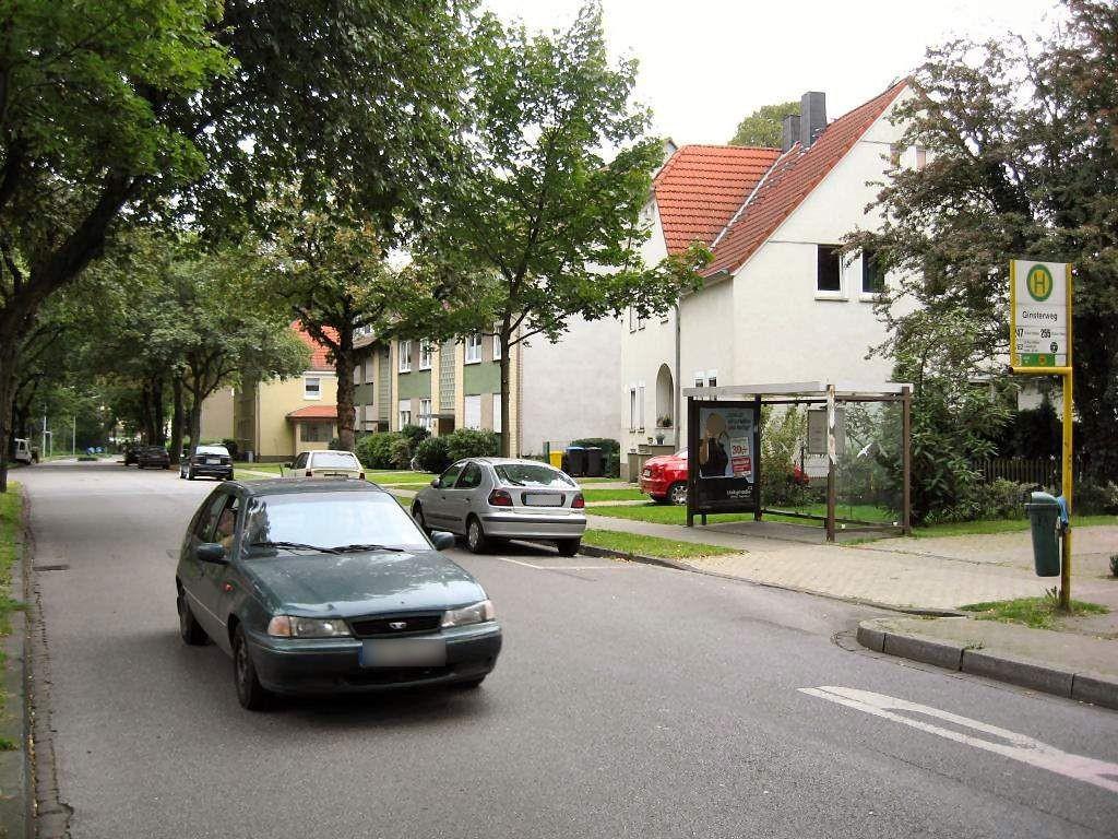Nienkampstr. 57-59/HST Ginsterweg/Ri. Buer/We.re.