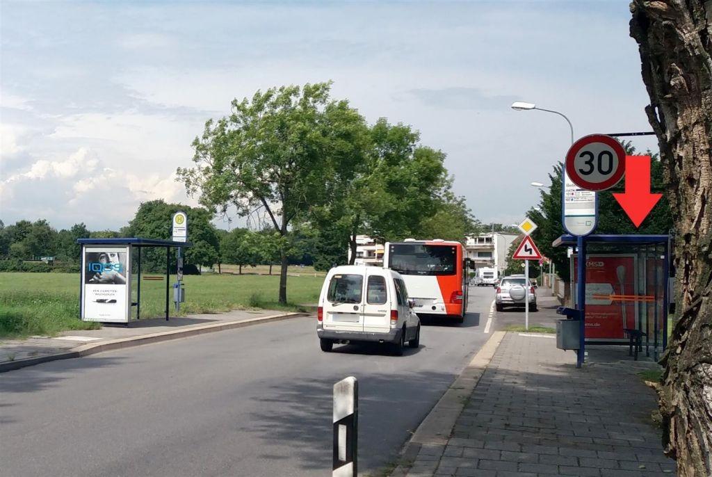 Bischofsheimer Weg/Biebernseeweg/innen