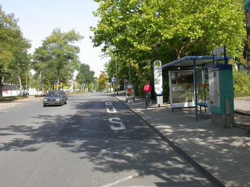 Markwaldstr./Seligenstädter Str./Storchsrain/innen