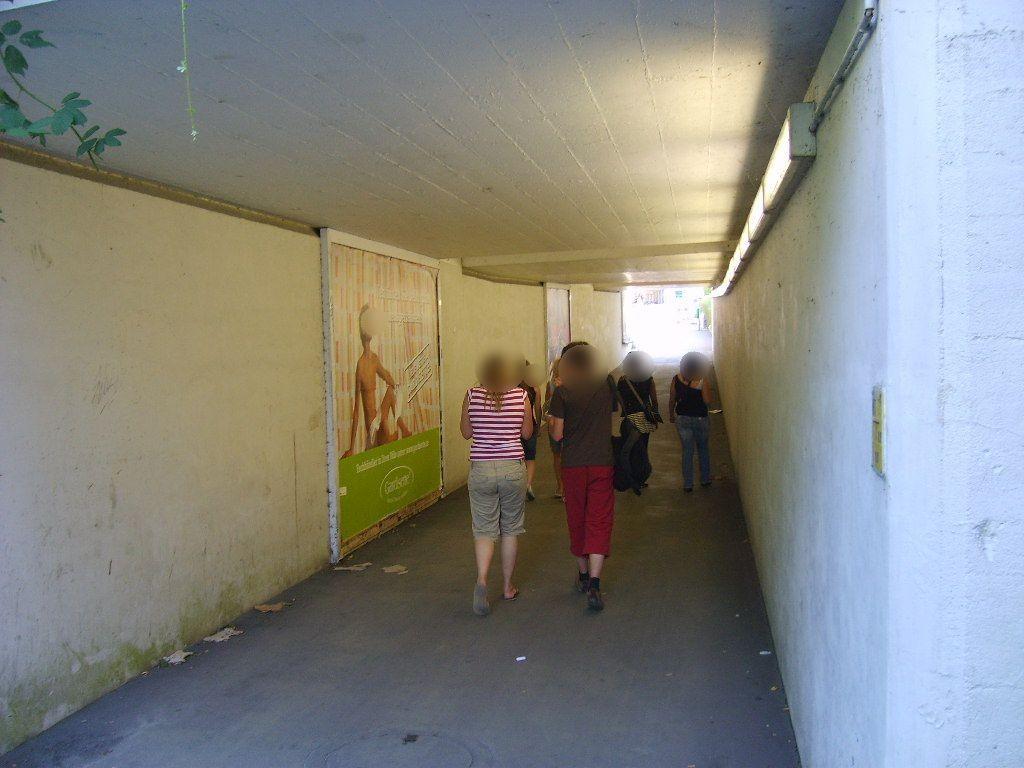 Eckenerstr./Paulinenstr./Fußgänger-Ufg.