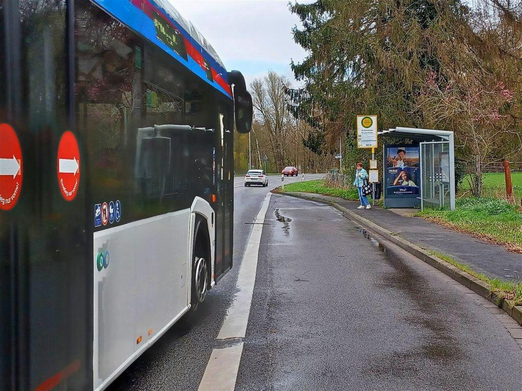Auf dem Damm/HST Schlossbad sew./We.re.