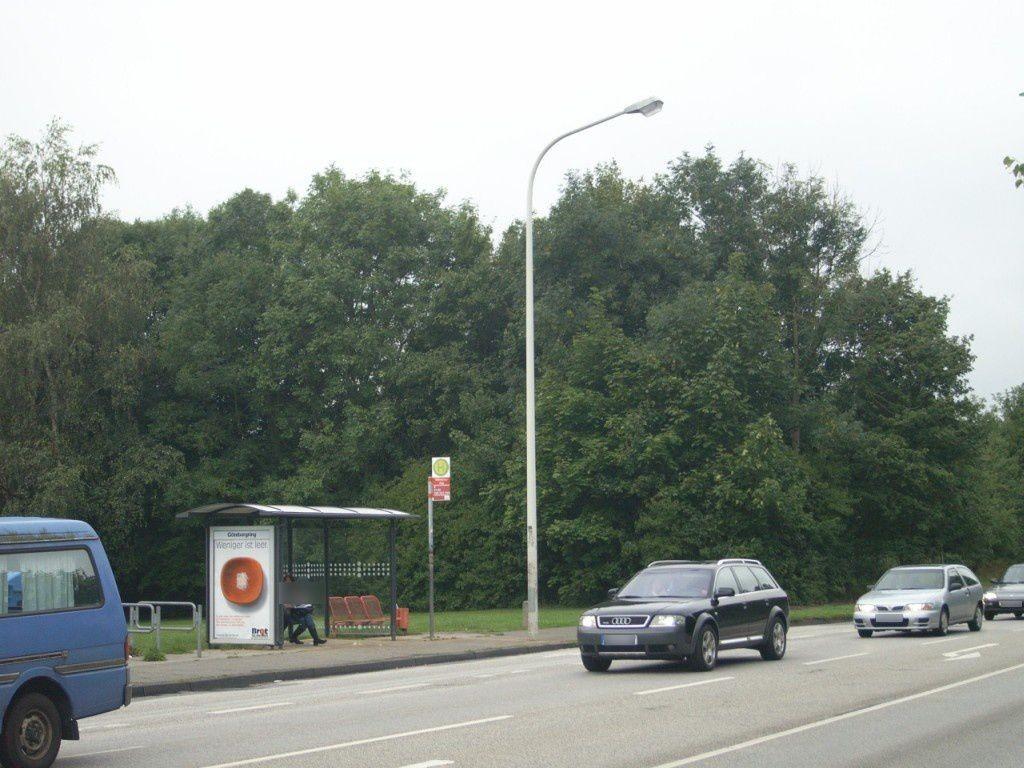 Skandinaviendamm/Göteborgring 81/We.li.