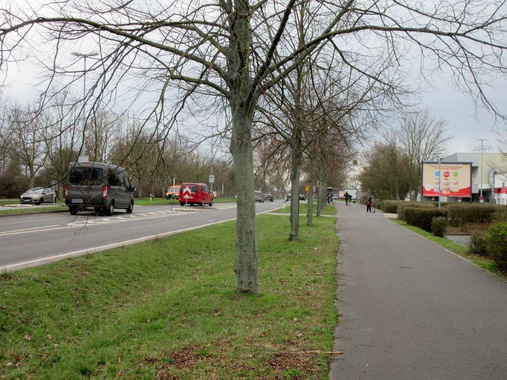 Olvenstedter Graseweg  37/Eingangsbereich OS
