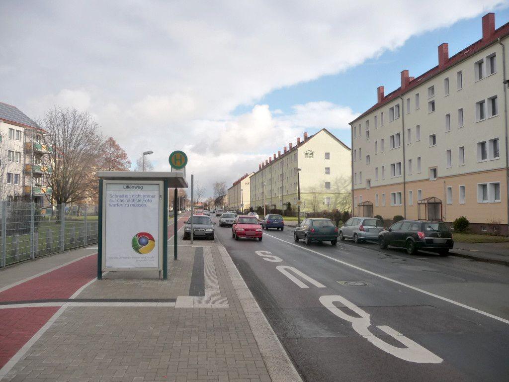 Kirschweg geg. 83/Lilienweg We.li.