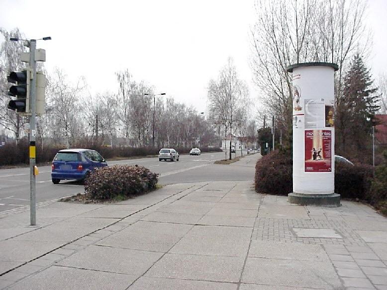 Birkenallee/Überweg W.-Friedrich-Krankenhaus