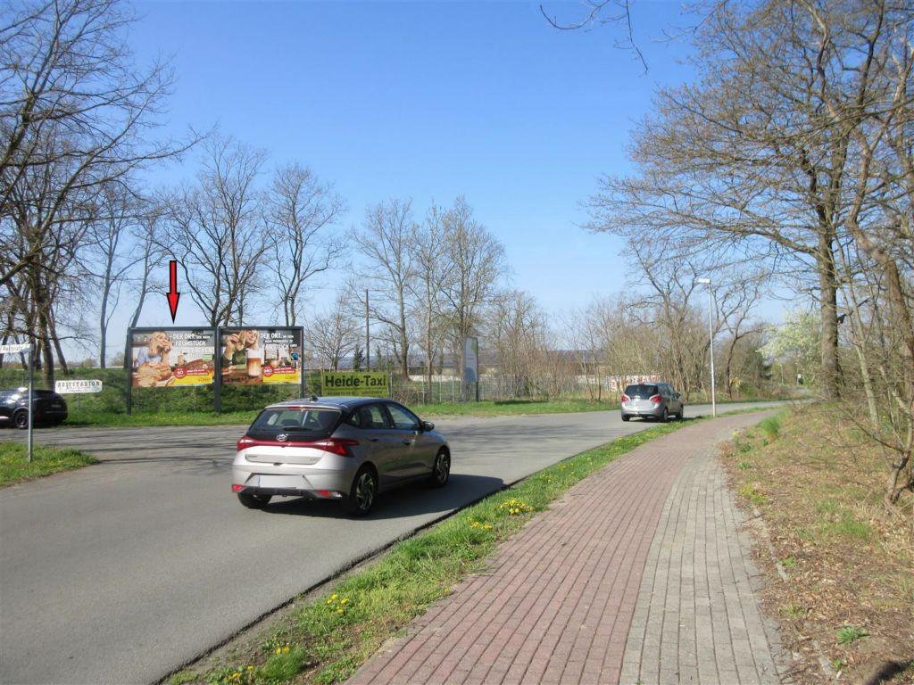 Buschhorstweg/Reitplatz quer