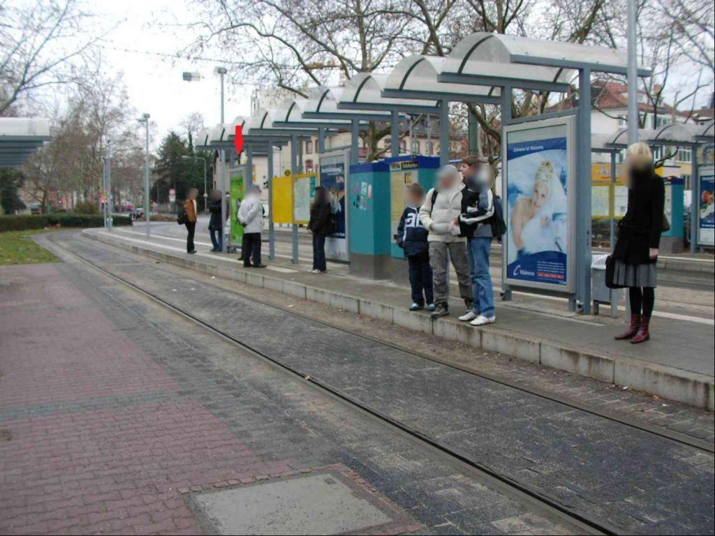 Stresemannallee/Garten-/Mittelbahnstreifen/au.li.